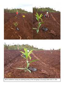 TREE PLANTING AT P.Y JUNE 27, 2016_Page_3