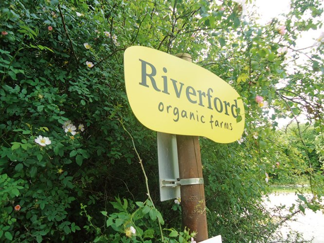 Visitors can indulge in comfort food at the Riverford organic farms