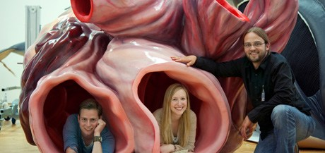 A blue whale's aorta the main blood vessel is large enough for a human to crawl through.