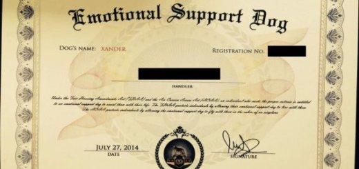Register your Dog for Emotional Support Animal Certificate