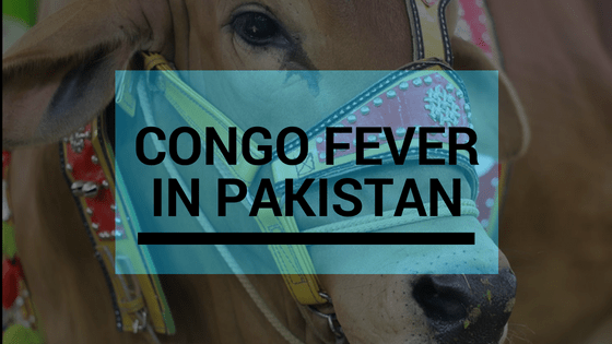 10 Facts You Don't Know About Congo Fever