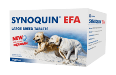 Synoquin EFA Large Breed