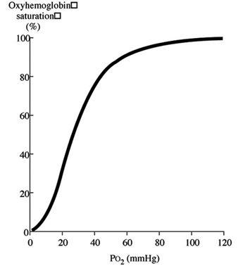 Oxyhaemoglobin dissociation curve, pt 3 what the curve means Vet