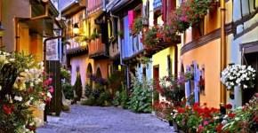 Borgogna, cosa fare low cost in Francia