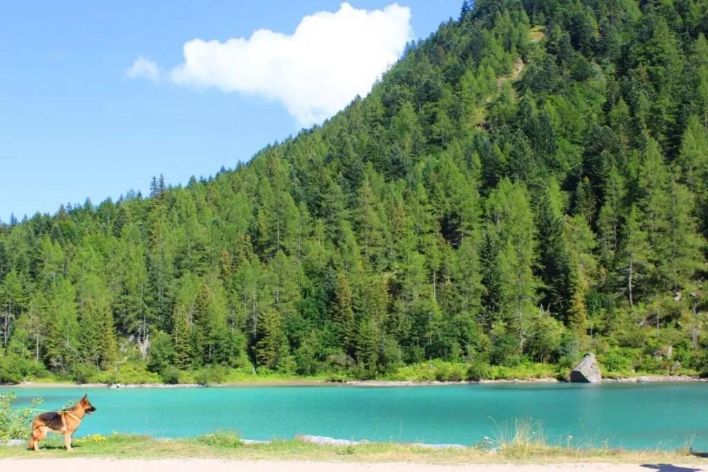 Massiccio del monte rosa cosa vedere dove mangiare a - Dogana svizzera cosa si puo portare ...