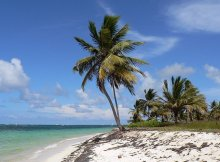 voos-low-cost-punta-cana