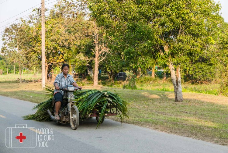 roadtrip tailandia