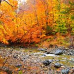 Trip Itinerary: Fall In New England