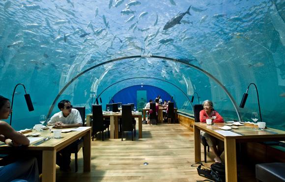restaurant insolite sous la mer