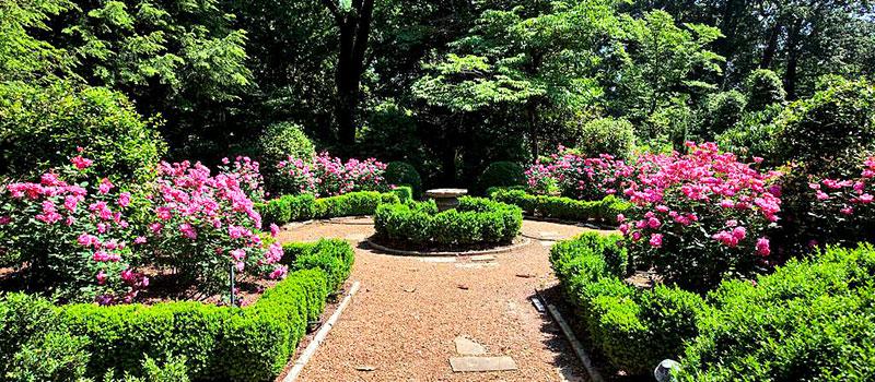 Victorian Garden Plants How to Make a Victorian Garden