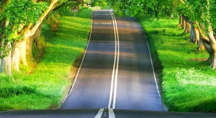 road_bg_h450