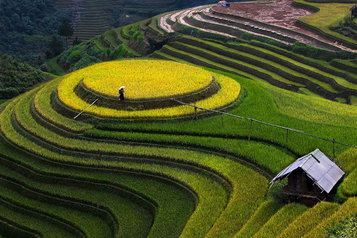 Cool Nature Wallpapers 3d Full Guide On When And Where To Travel Vietnam Travel