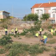 Vila-real prevé els efectes de la gota freda amb el primer torn de neteja de barrancs i camins rurals