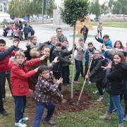 Més de 600 escolars participen fins al divendres que ve en la Setmana Ecològica