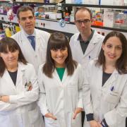 Un despatx d'advocats de Vila-real financia un grup de la Universitat de Navarra que investiga el càncer de pulmó