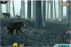 High Calibre Bears