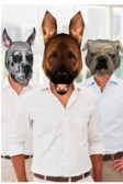 dog booth