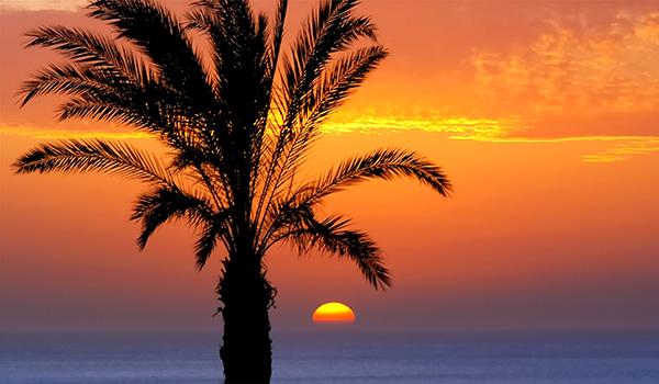 Views from the Vincci Selección La Plantación del Sur 5* Lujo Tenerife.