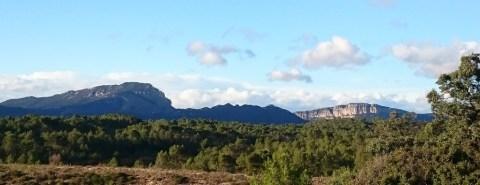Udsigten mod Pic St Loup
