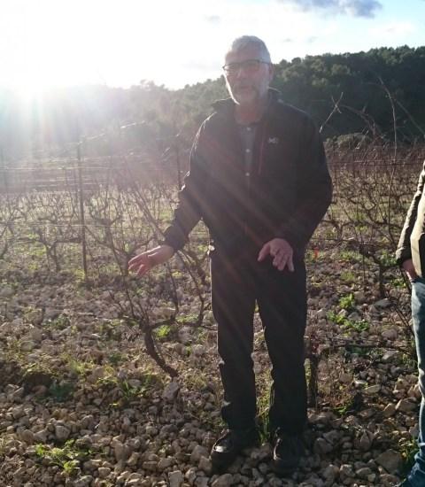 Pierre Clavel i vinmarken