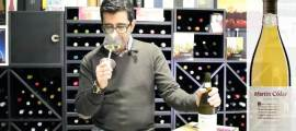 videocata-martin-codax-2012-para