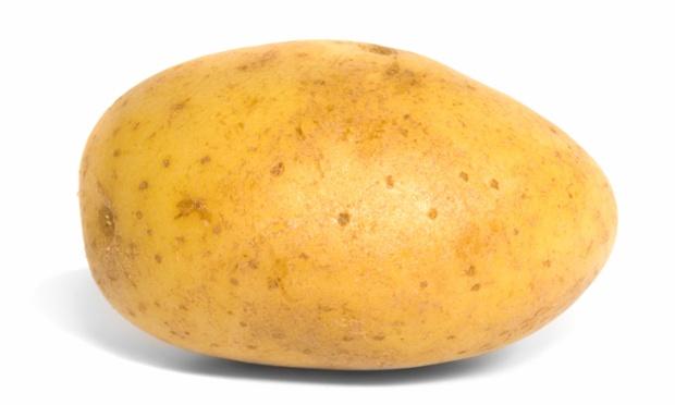 Potatoes, Earth and Society
