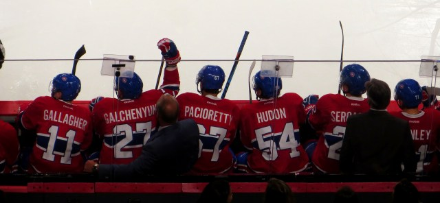 Sports In Montreal