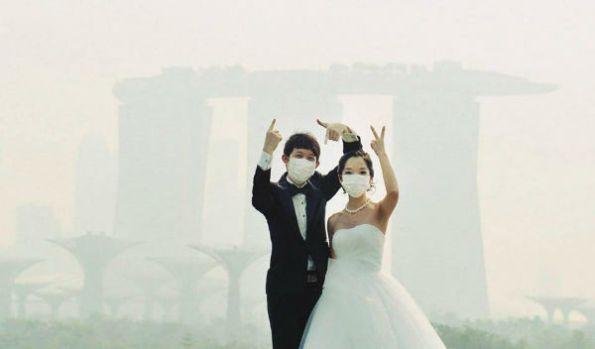 SG Haze