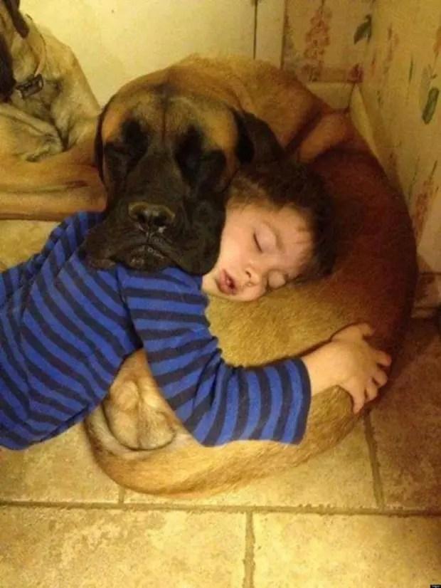 gente que tiene perros sabe (24)