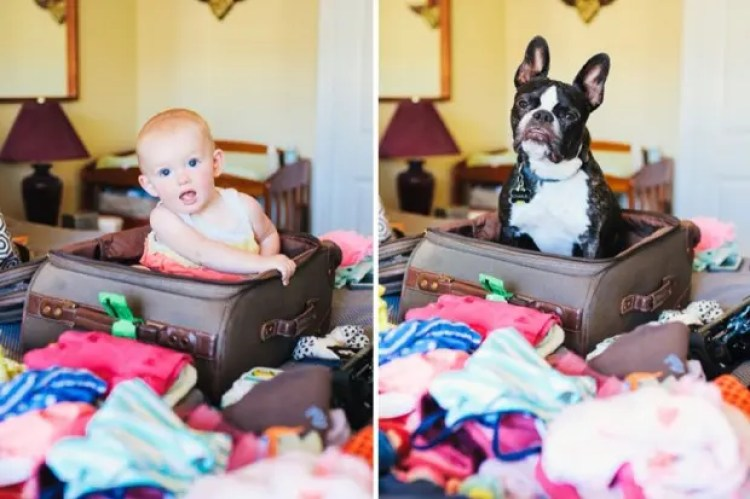 I-Photograph-My-Daughter-And-Dog-In-The-Same-Setting11__880