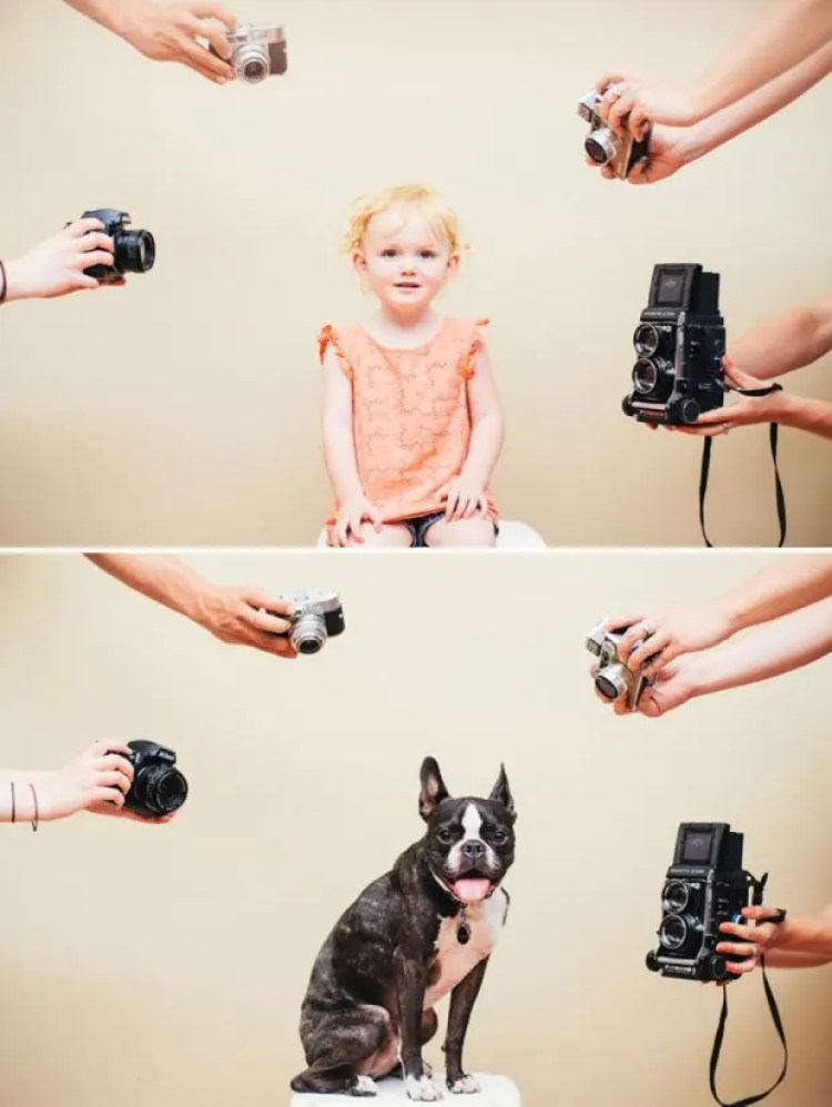 I-Photograph-My-Daughter-And-Dog-In-The-Same-Setting4__880