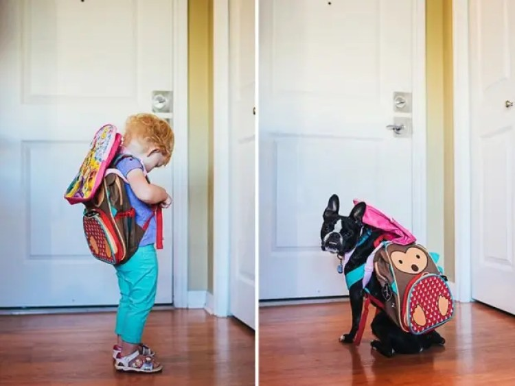 I-Photograph-My-Daughter-And-Dog-In-The-Same-Setting5__880
