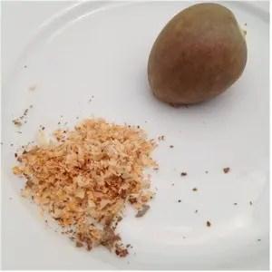 beneficios-semillas-aguacates-1
