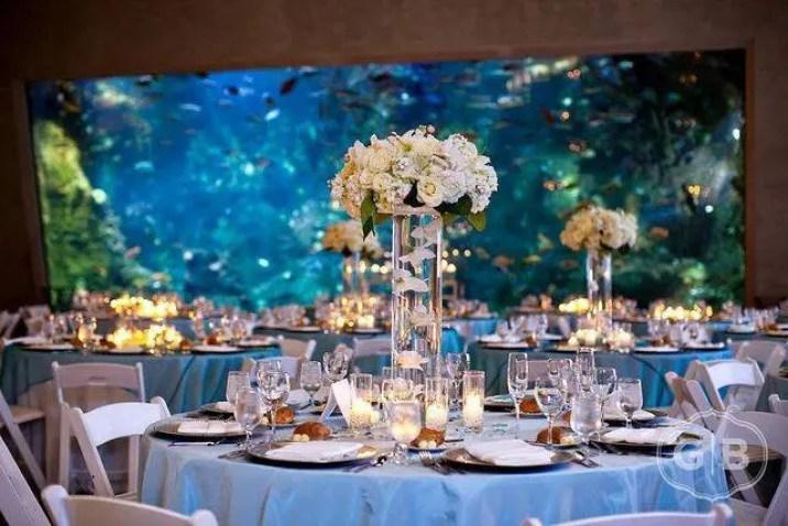 boda-acuario4
