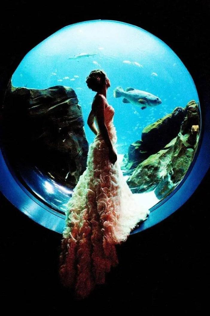 boda-acuario8