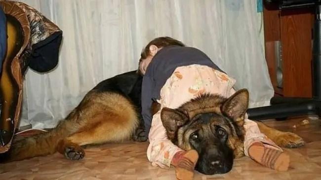 nino-duerme-perro