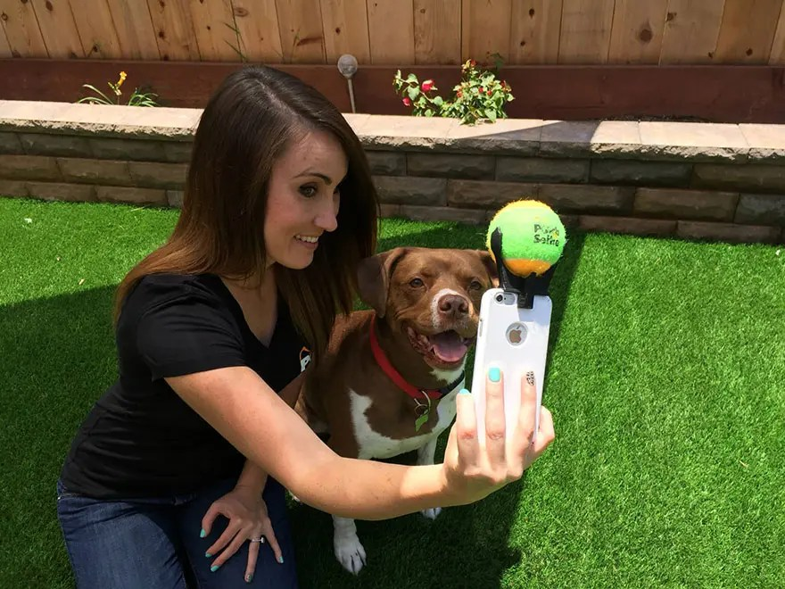 selfie perro 6