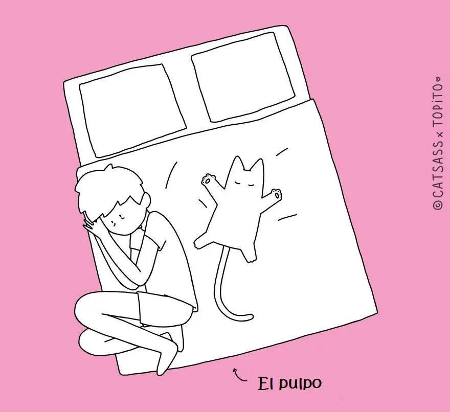 10-posiciones-para-dormir-con-tu-gato7