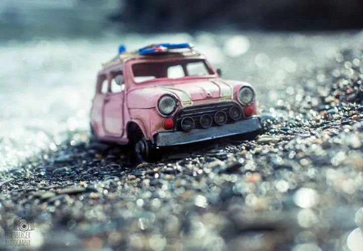 kim coches 13