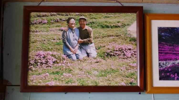 romantico jardin de flores 9