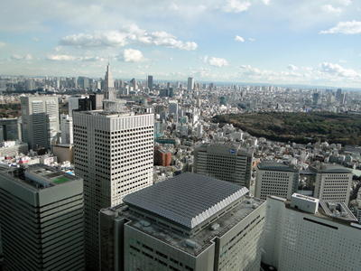 Japan - Tokyo Metropolitan Government Offices (16).JPG