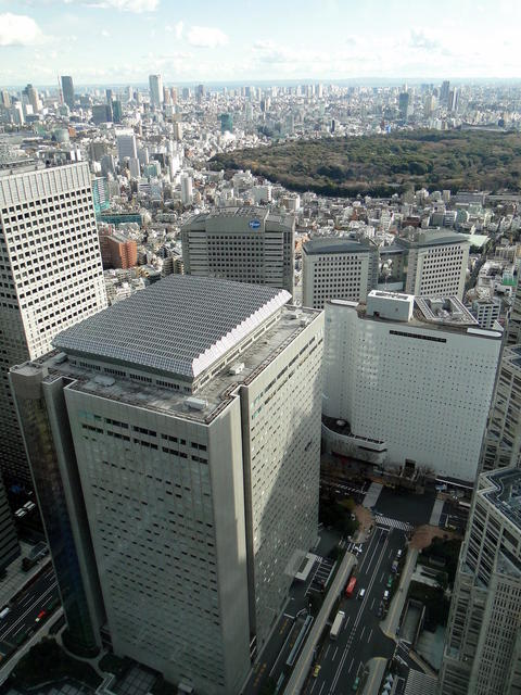 Japan - Tokyo Metropolitan Government Offices (18).JPG