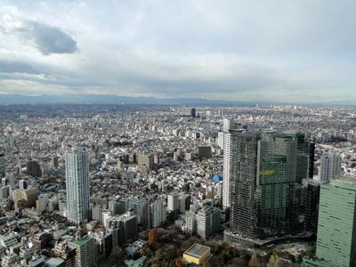 Japan - Tokyo Metropolitan Government Offices (21).JPG