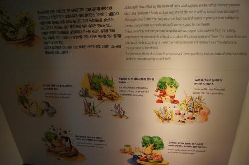 Kimchi Museum - Seoul (18).JPG