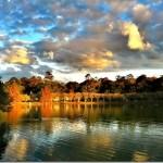 Lake Ella : Tallahassee