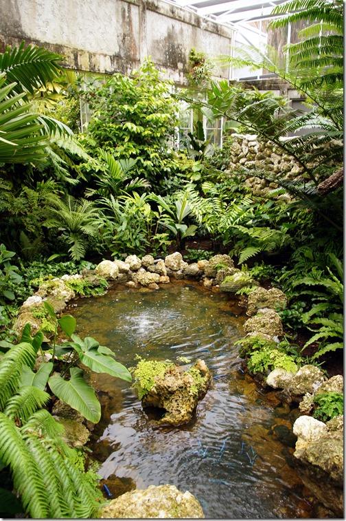 Fairchild Tropical Botanical Gardens - Miami (127)