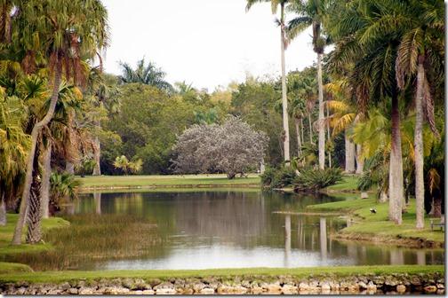 Fairchild Tropical Botanical Gardens - Miami (35)