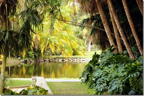 Fairchild Tropical Botanical Gardens - Miami (36)