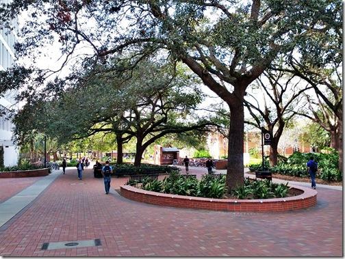 Florida State University Campus (13)