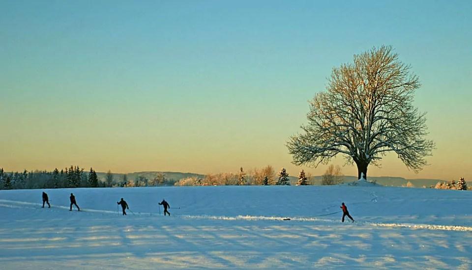 Skiløpere på jordene ved Heer. I Frogn har vi naturgleden rett utenfor husdøra! Foto: Tore Lundby.